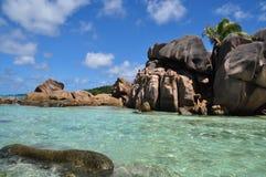 Cocos de Anse Imagen de archivo libre de regalías