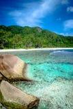 Cocos de Anse Foto de Stock