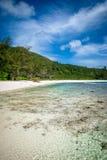 Cocos de Anse Fotos de Stock
