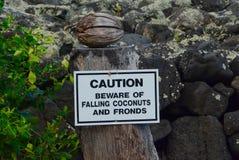Cocos de queda Beware of imagem de stock