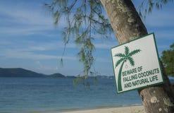 Cocos de queda Beware of e sinal da vida natural Fotografia de Stock Royalty Free