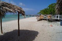 Cocos du Cuba Cayo Images stock