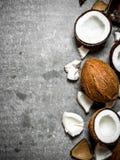 Cocos duros frescos Fotografia de Stock Royalty Free