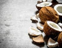 Cocos duros frescos Fotografía de archivo libre de regalías