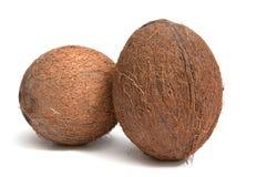 Cocos em um fundo branco. Fotos de Stock Royalty Free