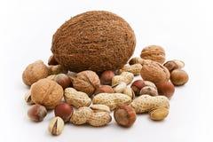 Cocos et noix Images libres de droits