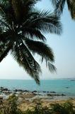 Cocos et sea-3 photographie stock libre de droits