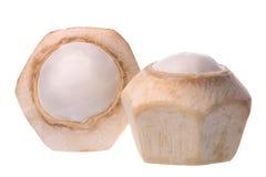 Cocos frescos aislados Imágenes de archivo libres de regalías