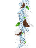 Cocos frescos com respingo da água Fotografia de Stock