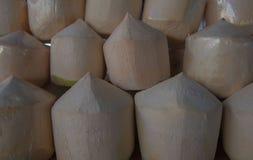 Cocos frescos das fileiras no mercado Coco fresco do fruto tropical no mercado Fotografia de Stock