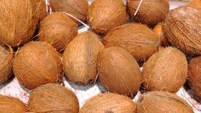 Cocos maduros no mercado como o fundo Imagens de Stock Royalty Free