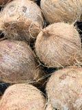 Cocos na mercearia Fotografia de Stock Royalty Free