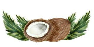 Cocos pintados à mão da aquarela, metade cortada madura, arte do alimento isolados no fundo branco e rotulação para o projeto bon ilustração stock