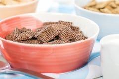 Cocos Shreddies Images libres de droits