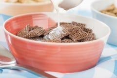 Cocos Shreddies Photos libres de droits
