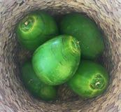 Cocos tropicales verdes en una cesta tejida natural Foto de archivo libre de regalías