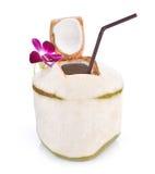 Cocos verdes com a palha bebendo isolada, trajeto de grampeamento Imagens de Stock Royalty Free