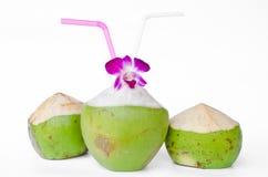 Cocos verdes con la paja de beber aislada Fotos de archivo