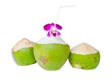Cocos verdes con la paja de beber aislada Imagen de archivo