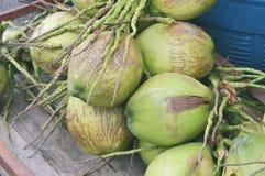 Cocos verdes en el mercado Fotografía de archivo