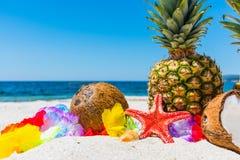 Cocos y piñas en una playa tropical Imagenes de archivo