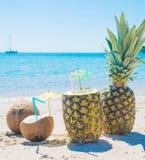 Cocos y piñas por la línea de la playa Imagen de archivo