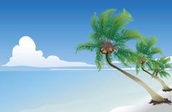 cocotier illustration libre de droits
