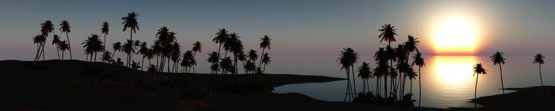 Cocotier et mer de plage de paysage marin Images libres de droits