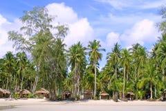 Cocotiers de huttes et Photos libres de droits