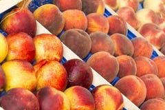 Cocotte en terre de pêche de fruit images libres de droits