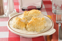 Cocotte en terre de poulet et de biscuit Image stock
