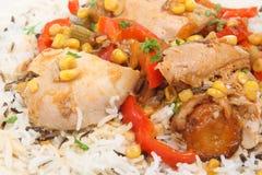 Cocotte en terre et riz de poulet Photos stock