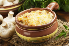 Cocotte with mushroom and chicken Royalty Free Stock Image