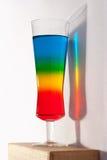 coctail彩虹反映 库存照片