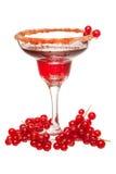 Coctail för röd vinbär Arkivbilder