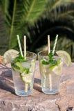 Coctail för vatten för sommardrinksodavatten Royaltyfri Fotografi