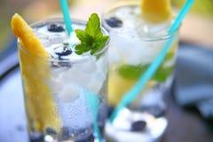 Coctail för vitt vin med ananas Royaltyfri Foto
