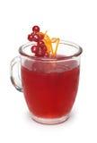 Coctail med den röda vinbäret Arkivfoto