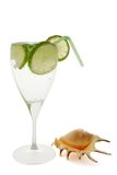 Coctail and shell. Coctail with lemon and shell on the white background stock images