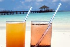 Coctailar i Maldiverna Royaltyfri Fotografi