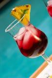 coctailcranberry Arkivbild