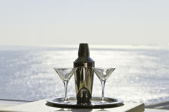 coctailexponeringsglasshaker Royaltyfria Bilder