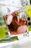coctailfärgstänk Royaltyfri Fotografi