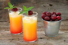 Coctel de la bebida del jugo Fotos de archivo libres de regalías