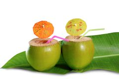 Coctel de la paja de la bebida del coco Foto de archivo libre de regalías
