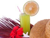 Coctel del jugo de limón Foto de archivo libre de regalías
