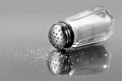 Coctelera de sal Imagen de archivo libre de regalías