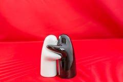 Coctelera de sal y de pimienta Imagen de archivo libre de regalías