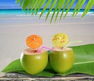 Cocteles verdes blandos frescos de la playa de la paja de los cocos Foto de archivo
