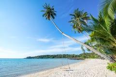 Cocunut и пляж в хорошей погоде Стоковое Фото